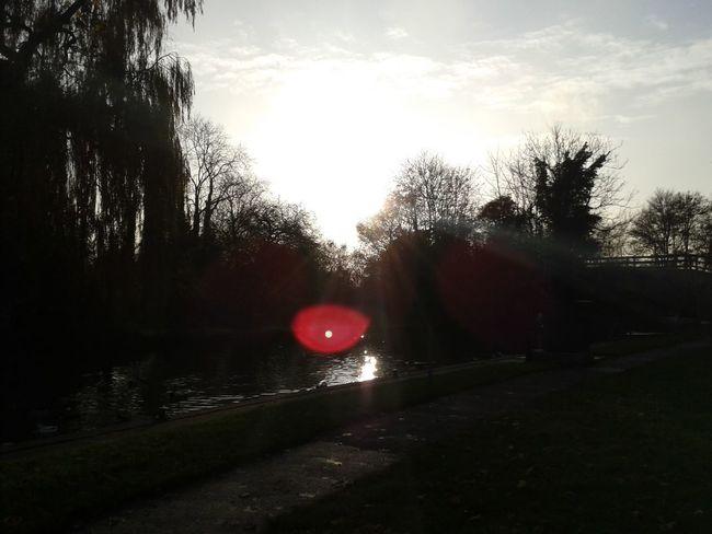 Sun Burst Reflection Razorspics Stinger11th