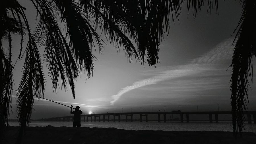 Fishing Sea Outdoors Water Beach Beauty In Nature People Sky One Person Landscape Silhouette KSA Sunrise_Collection One+2 One+ Corniche