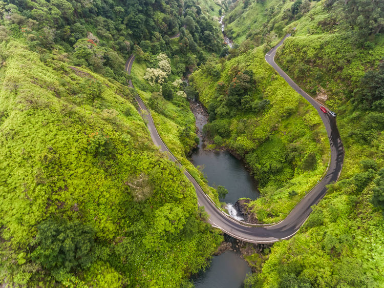Aerial view of the curvy Hana Highway, Maui Hawaii Hawaii Maui Pond Aerial View Beauty In Nature Curve Day Green Color Hana Highway High Angle View Landscape Lush Foliage Mountain Mountain Road Nature No People Outdoors River Road Road To Hana Scenics Transportation Travel Destinations Tree Winding Road