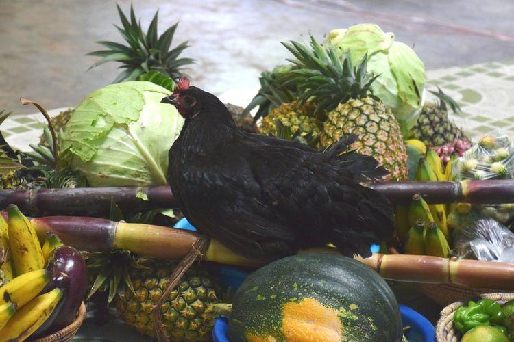 Nyakatooma Uganda Fruits And Vegetables Close-up Chicken - Bird Cockerel Animal Crest