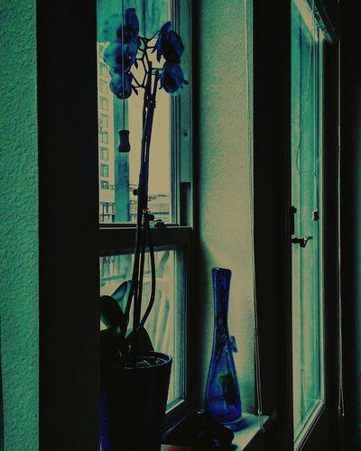 Poetrycommunity Poetryisthenewblack Poetsofinstagram Poem Poet Poetsofig Writersofinstagram Winter Wonderland Naturephotography Wordsmith Poetry Playonwords Oldenglishphrases Writerscommunity Instapoem Wordsiwrite Words Writing Songwriter Inspiration Mythoughts Ink Inmyhead Writer