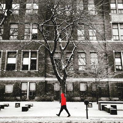 Snow time Streetphotography Montréal Colorsplash Winter Snow ❄ AMPt Community