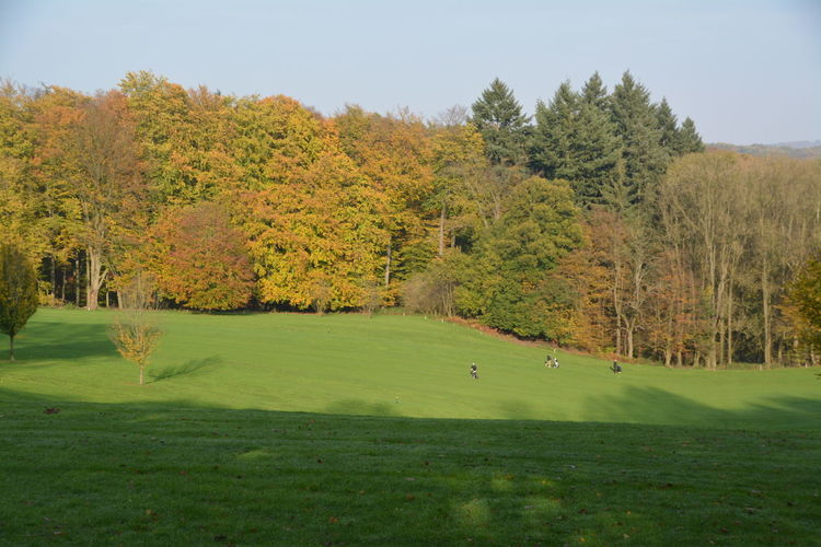 Autumn Beauty In Nature Day Golf Golf Course Golf Swing Golfer Grass Green - Golf Course Green Color Landscape Leisure Activity Nature No People Outdoors Playing Playing Field Putting Green Sand Trap Scenics Sky Sport Taking A Shot - Sport Tee Tree