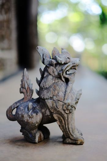 Singha Singha Wood - Material Fairytale Animals No People Animal Themes Close-up Day Outdoors