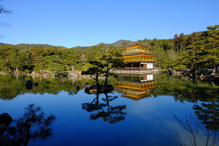 Kinkakujicho Architecture Beauty In Nature Built Structure Clear Sky Japan Kyoto Lake Landscape Outdoors Sky Tranquil Scene Traveling Water 金閣寺 鹿苑寺