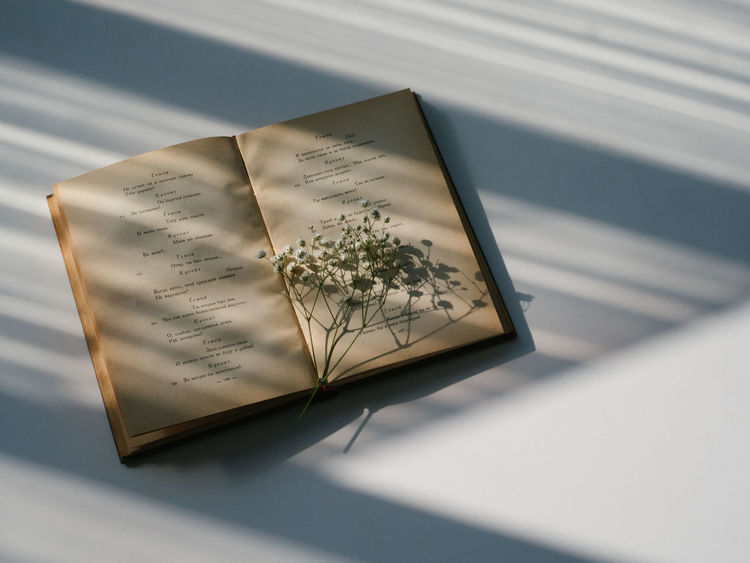 Baby Breath Baby Breath Flower Book Close-up Day Day Light Deceptively Simple Harmony Indoors  Minimalism No People Reading A Book Shadows & Lights Simplicity Table Warm Morning White Background Poetry Poetry In Pictures Summer Exploratorium