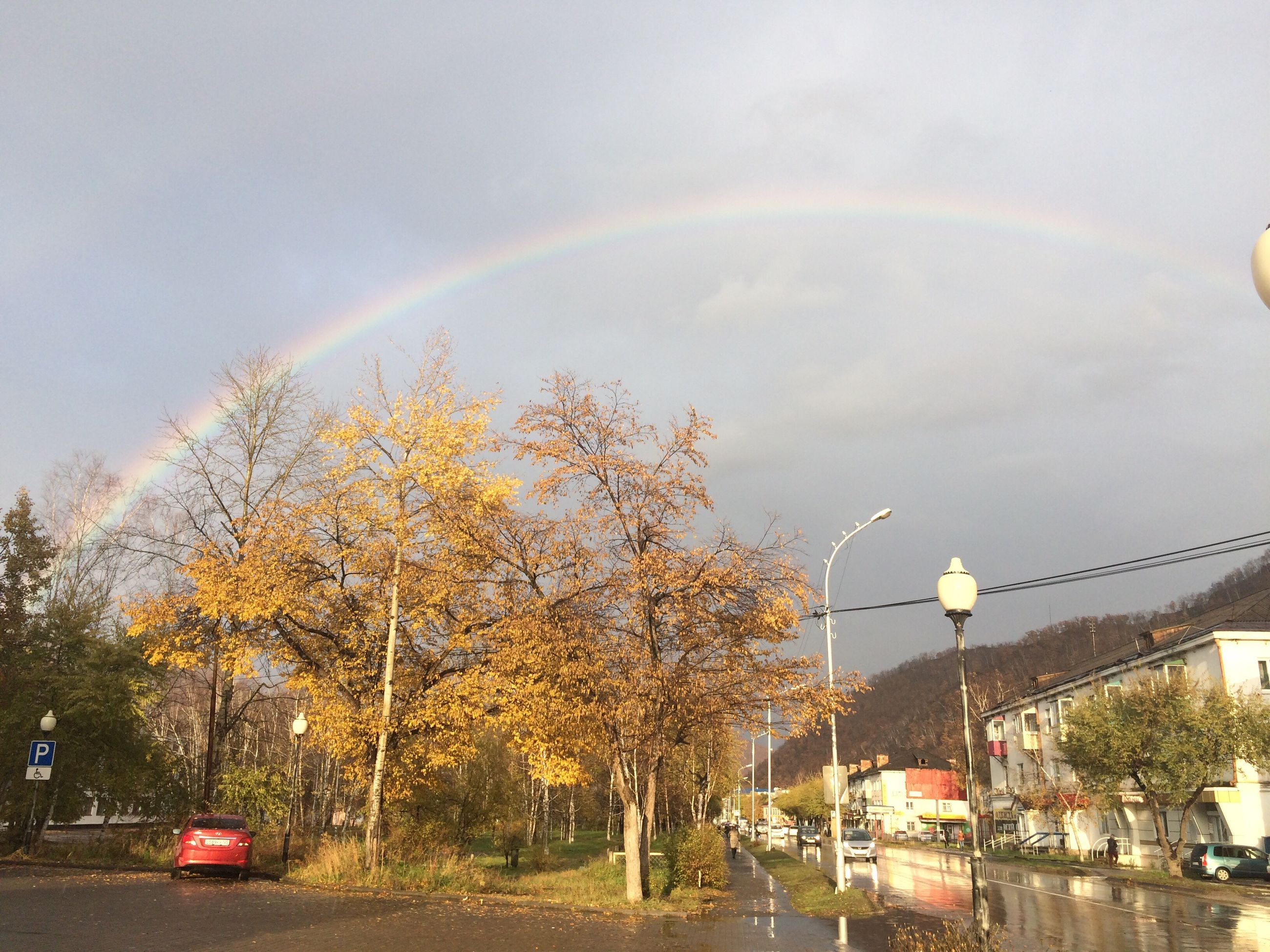 rainbow, tree, multi colored, transportation, mode of transport, car, beauty in nature, land vehicle, road, street, street light, scenics, nature, day, growth, natural phenomenon, tranquil scene