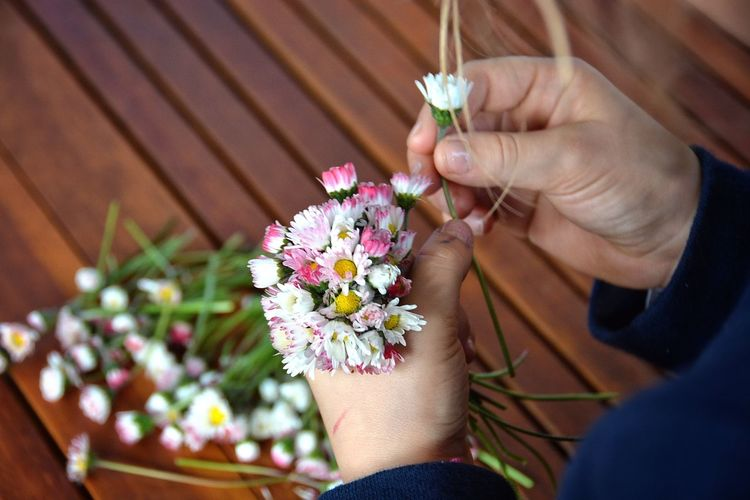 Cropped image of hand holding flower
