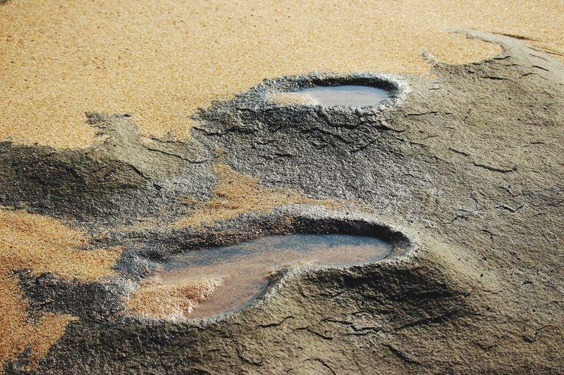 Seasand And Rocks