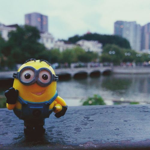 Minion  Hello ! From Park Dave's Adventures