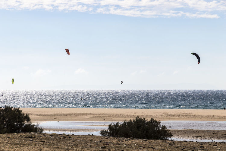 People practicing kiteboarding in the beach of Bolonia, outside of Tarifa, in Andalusia, southern Spain Baelo Claudia Bolonia Adventure Beach Beauty In Nature Day Extreme Sports Flying Horizon Over Water Kitesurfing Leisure Activity Mid-air Motion Nature One Person Outdoors Parachute Paragliding Sand Scenics Sea Sky Sport Tranquil Scene Water