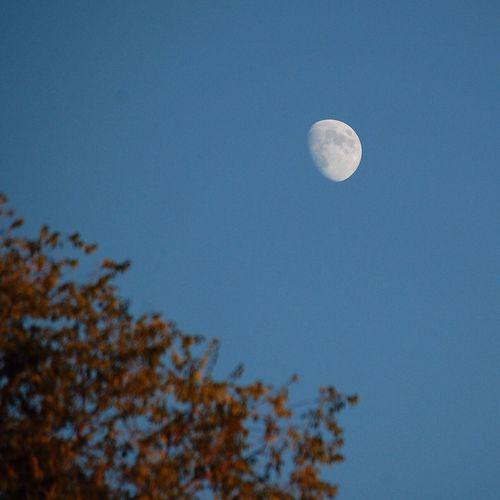 Autumn moon. Lakeview Park, Lorain, Ohio Hello World Autumn Lorain Lighthouse