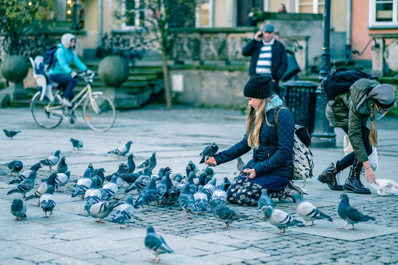 Pigeons are friendly for the time being. [46/365] 2016.11.24 I went to the Old Town in Gdańsk today. Camouflage Clothing Casual Clothing City Crouching Daily Life Day Feeding Animals Feeding The Birds Flock Of Birds Friendly Girl Lifestyle One Person Outdoors People Pigeon Pigeons Sitting Sitting Smiling Street Photography Streetphotography Town Urban Young Adult