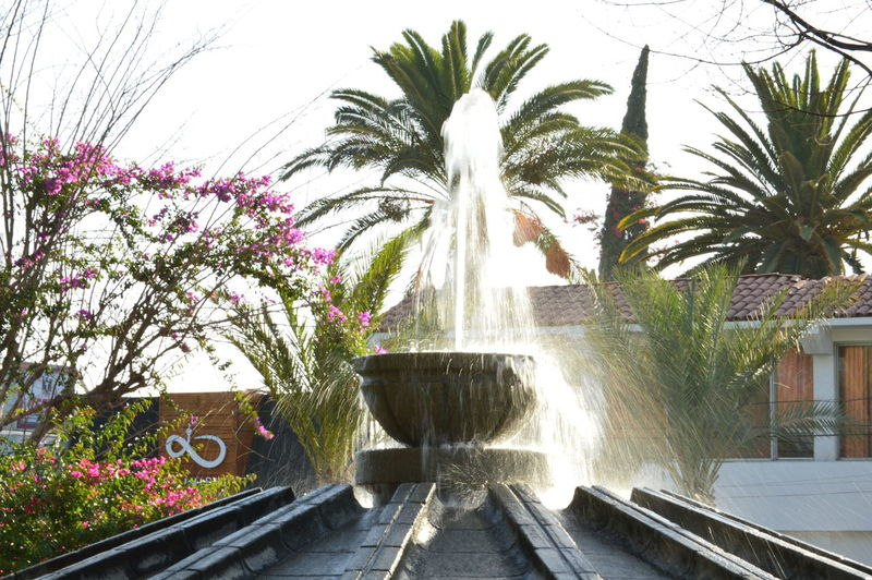 Architecture Day Fountain Motion No People Outdoors Palm Tree Park Park - Man Made Space Water