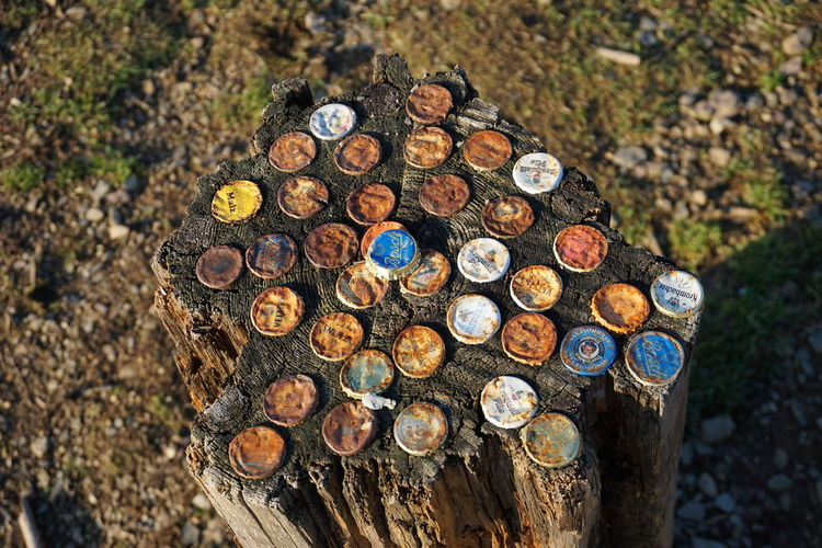 High angle view of old bottle caps on tree stump