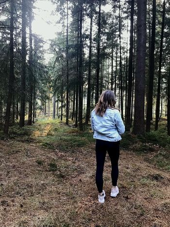 forest sounds - https://youtu.be/QUQzkZq5JfM Forest Rear View