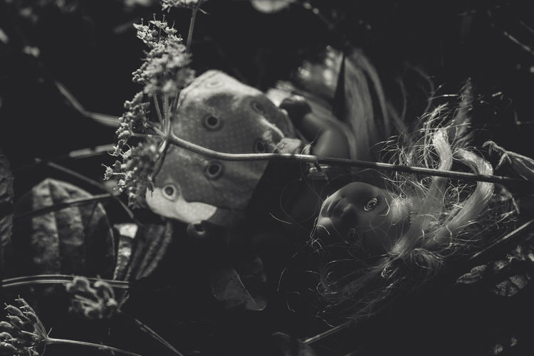 Beauty In Nature Blackandwhite Blak And White Christmas Tree Close-up Creepy Day Doll Focus On Foreground Fragility Freshness Growth Hidden Nature Plant Plants