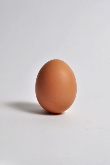 Chicken Egg Animal Egg Baking Brown Chicken Chicken - Bird Chicken Egg Close-up Egg Healthy Food Isolated Object Isolated White Background No People Protein Raw Food Single Object Still Life Studio Shot Vertikal White Backgroud