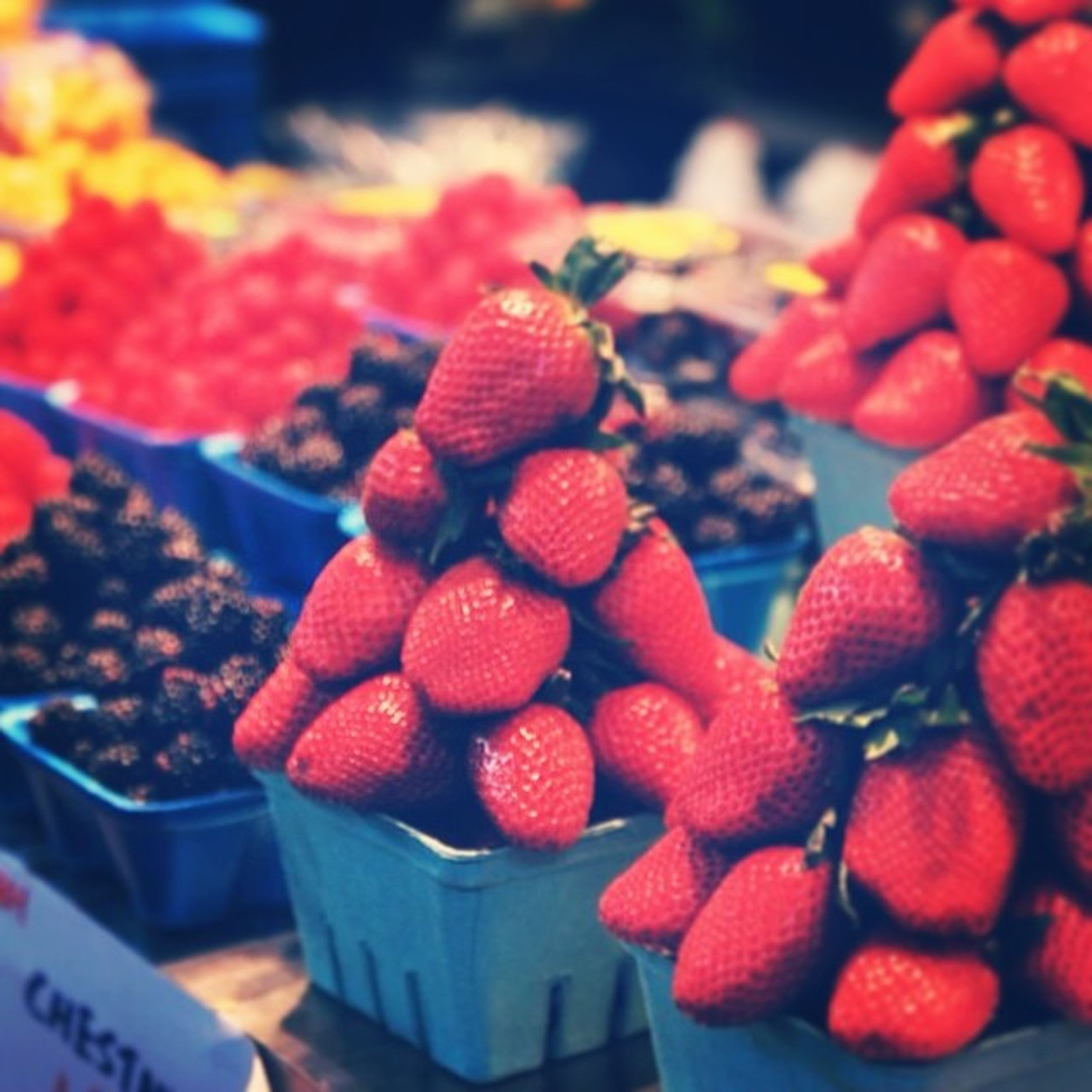 food and drink, fruit, food, freshness, healthy eating, red, berry fruit, ripe, large group of objects, abundance, focus on foreground, close-up, berry, strawberry, cherry, raspberry, grape, juicy, still life, selective focus