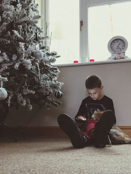 Full Length One Person Childhood One Boy Only Sitting Tree Christmas Tree Christmastime Christmas List
