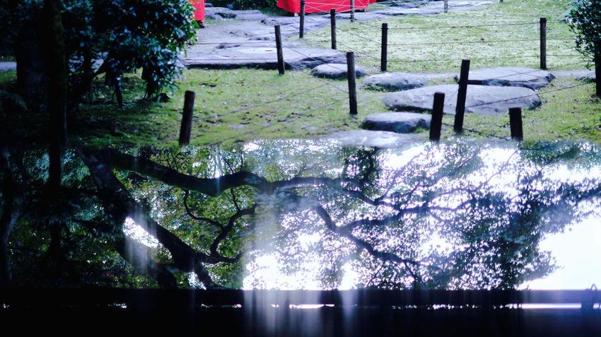 "respect ""Rimpa"" Style / test shot & edit case. Shinden-Ann, Katafuchimachi, Nagasaki City today. Photos(iMac) only 16:9 Crop 50mm 1.4 Discover Kyushu, Japan How's The Weather Today? Morning Light Panasonic Lumix GX1 Reflections Respect Showcase: November Test Shot 心田菴 琳派 長崎市"
