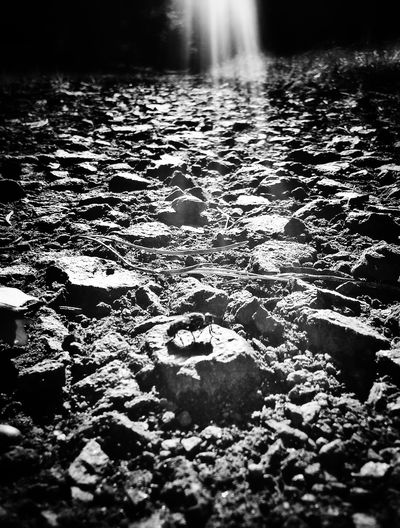 """The soil of a man's heart is stonier..."" (Stephen King) Bw_collection Light And Shadow The Devil's In The Detail NEM BadKarma"