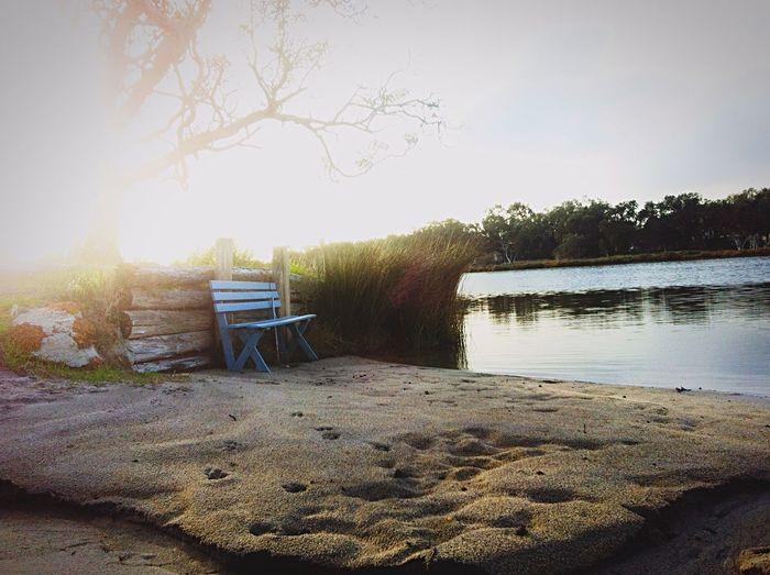 Murray River Peel Region Waterside Landscapephotography Scenery Take A Seat Just Chillin' Water