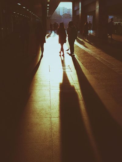 Creative Light And Shadow Shadows & Lights Light And Shadow Street Photography Streetphoto_color Bird Walking Morning Cmmaung Cmmaung.me Paint The Town Yellow