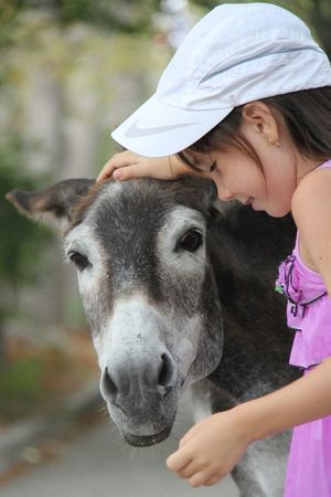 RePicture Giving Hugs & Love  Hug Child Girl Donkey Mule