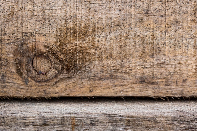 Real natural wood texture and surface background Backgrounds Close-up Closeup, Surface, Grain, Wallpaper, Floor, Table, Natural, White, Red, Blank, Light, Old, Top, Hardwood, Plank, Abstract, Macro, Wood, Wall, Furniture, Panel, Lumber, Backdrop, Texture, Design, Interior, Home, Real, Wooden, Background, Board, Grunge, Spac Day Hardwood Nature No People Outdoors Textured  Wood - Material Wood Grain