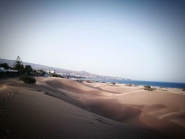 Dunas Maspalomas Beach Tranquil Scene Tourism Water Beauty In Nature