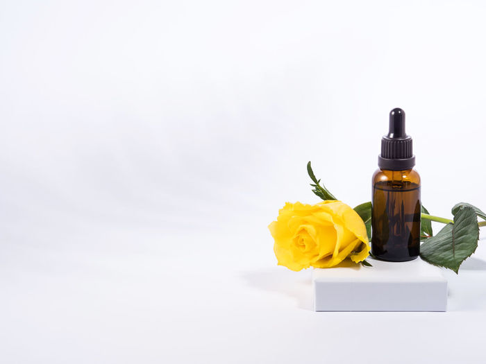 Close-up of yellow rose in bottle against white background