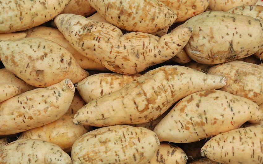 Full frame shot of sweet potato