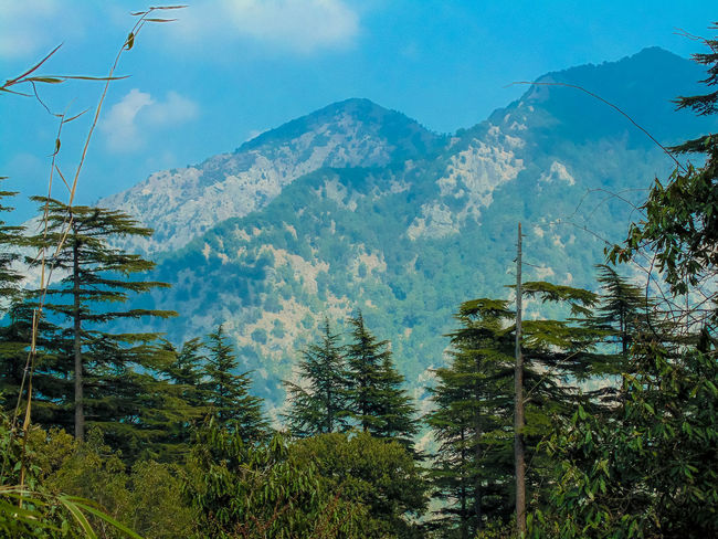 the dhanaulti eco park viewpoint ... Beauty In Nature Blue Cloud Cloud - Sky Countryside Day Dhanaulti Green Color Growth Idyllic Landscape Mountain Mountain Range Mussoorie Nature Non-urban Scene Outdoors Scenics Sky Tadaa Community Tranquil Scene Tranquility Tree Uttarakhand View