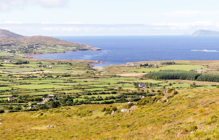 Ireland Beara Peninsula Beara Way Eyeries Water Sea Rural Scene Agriculture Tree Beach Sky Landscape Terraced Field View Into Land Patchwork Landscape Wide Shot Wide Coastline Agricultural Field Coast Seascape