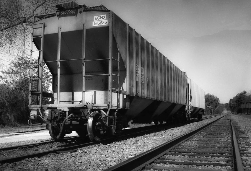 Business Day Film Photography Filmisnotdead Freight Train Freight Transportation Land Vehicle Mode Of Transportation Nature No People Outdoors Plant Public Transportation Rail Transportation Railroad Car Railroad Track Shunting Yard Sky Track Train Train - Vehicle Transportation Travel Tree