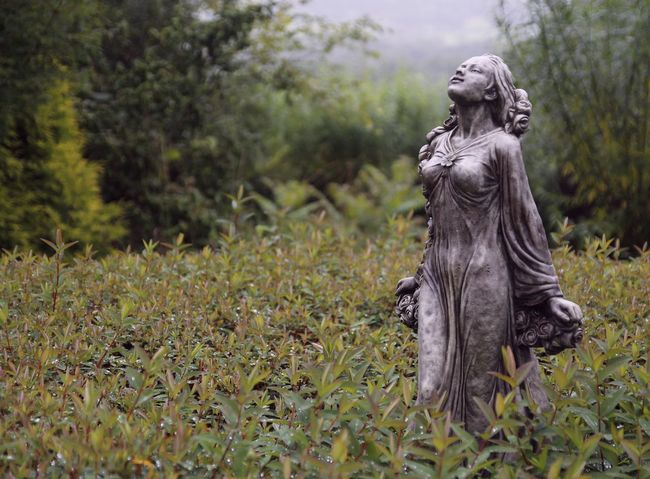 great places to visit in Wales... Garden Decoration Wales Angel Close-up Day Front Focus Garden Mystical No People Outdoors Sculpture Sculpture Garden Statue