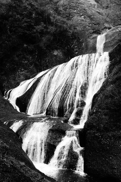 Black And White Friday Waterfall Nature Rock - Object Scenics Water Motion River Outdoors Beauty In Nature Day Power In Nature No People Rapid Travel Destinations Tree Forest