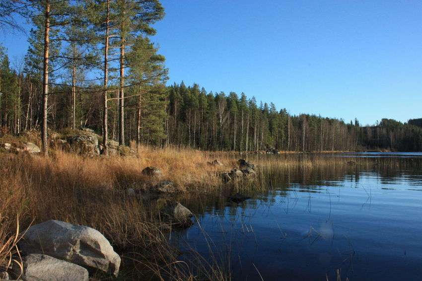Cristal Clear Finland Lake North Novembre 2015