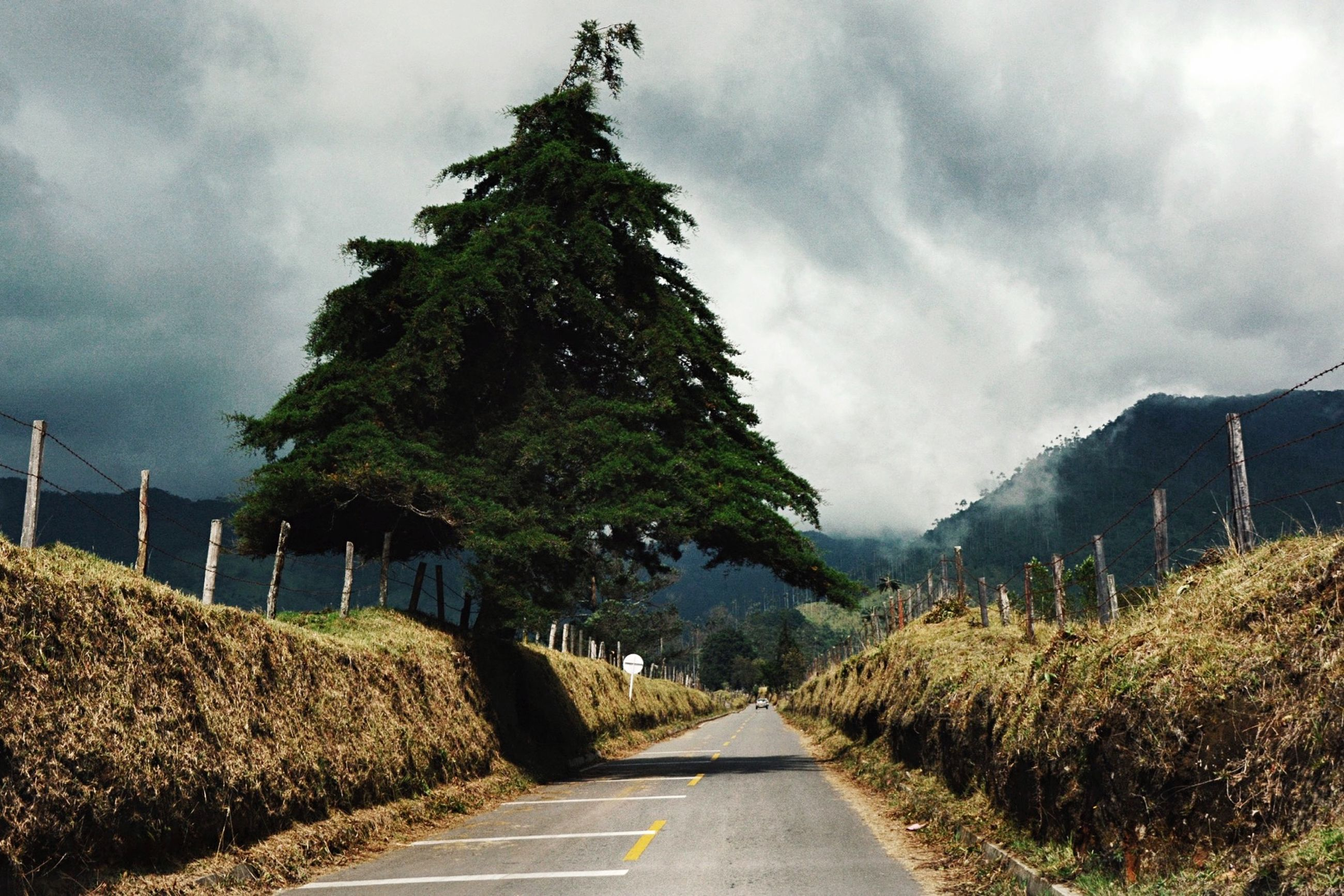 the way forward, sky, road, cloud - sky, diminishing perspective, vanishing point, cloudy, transportation, tree, cloud, tranquility, mountain, empty road, empty, tranquil scene, nature, country road, long, plant, leading