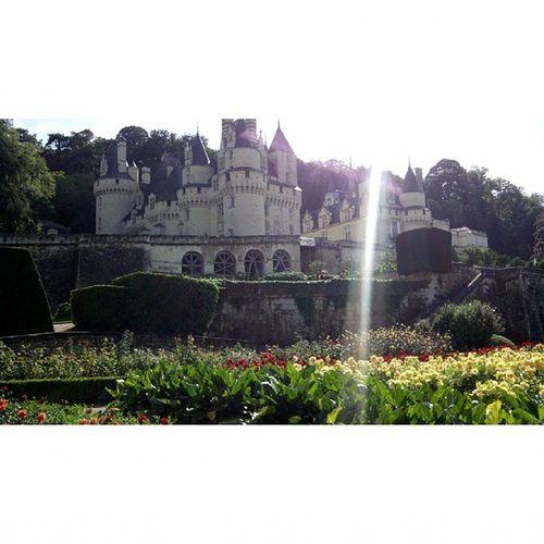 Rygniusse Sinfiltro Loira Castillos castles france