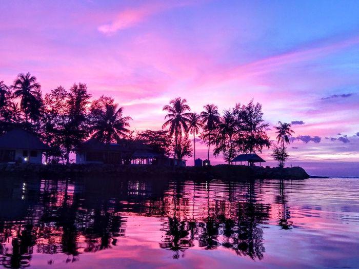 Tree Water Sunset Multi Colored Purple Pink Color Reflection Lake Sky Horizon Over Water Silhouette Scenics Seascape Idyllic Romantic Sky Tranquil Scene Magenta Calm Ocean Shore Sea