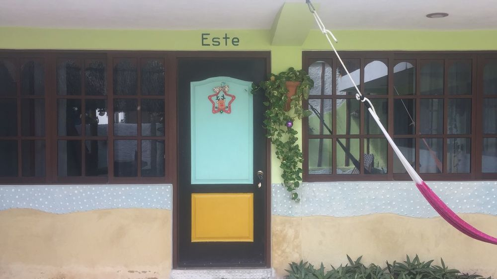 Marvins Suites Holbox Island Architecture Built Structure Window No People Day Building Building Exterior Text Entrance Human Representation Door Art And Craft Transparent Plant Glass - Material Reflection