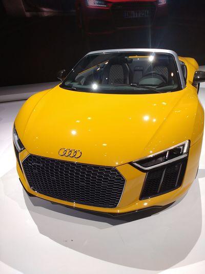 Audi Yellow Builtforspeed Expensive CarShow Beautiful