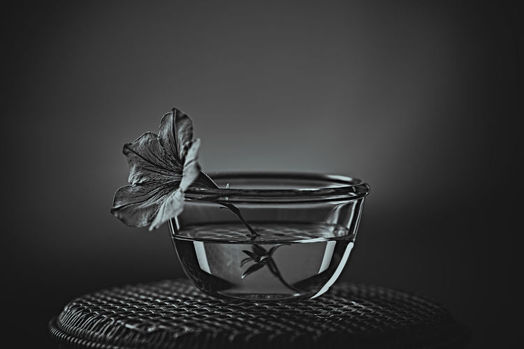 Close-up of flower on glass table against black background