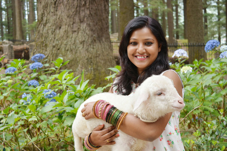 Cutness Overload Lamb Manali India Sweet Memories