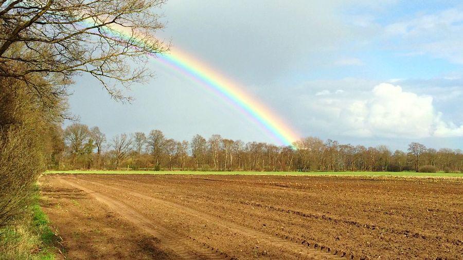 Rainbow of hope Landscape Snapshots Rainbow Nature Colorful