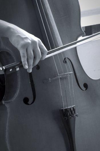 Photooftheday ɖɛtaɨʟs Black And White Hand Cello♡