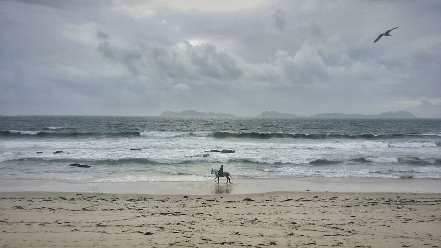 Distant view of man riding horse at beach against cloudy sky