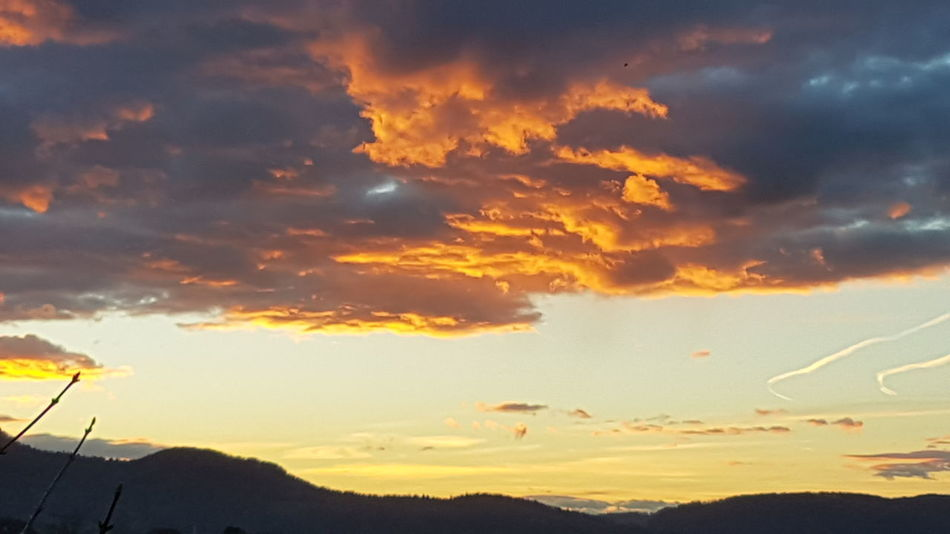 Mountain Tree Sunset Silhouette Awe Rural Scene Dramatic Sky Social Issues Yellow Sky Meteorology Cumulus Cloud Heaven Cloudscape Sky Only